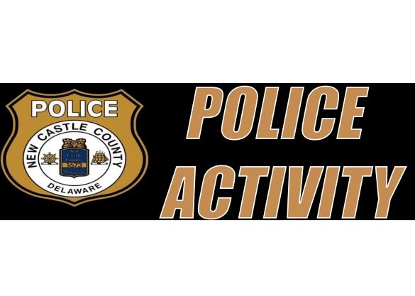 Police Activity.jpg